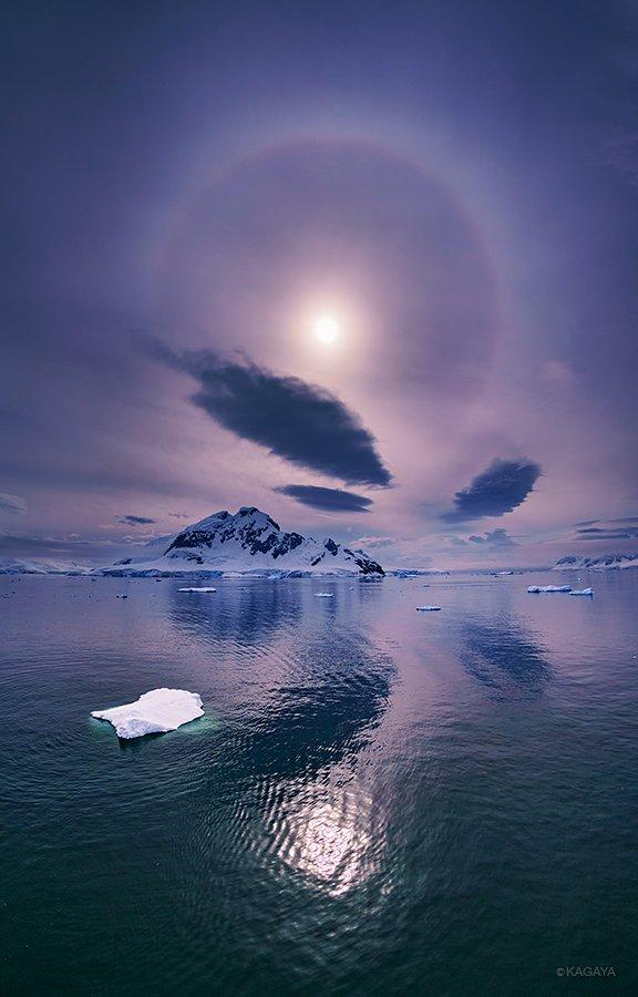 第三回 ペンギンにアザラシ、南極の虹。0℃の真夏に、徹夜で夢を見た。