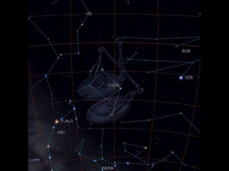 天体観測をしよう!春に見ることのできる星座