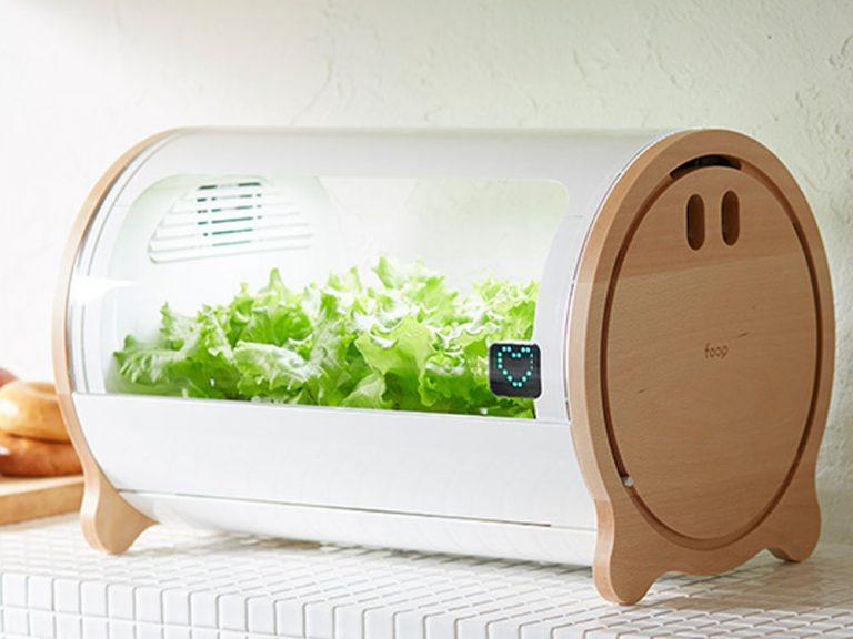 """宇宙兄弟スペシャルコラボモデルも☆水耕栽培機""""foop""""でかんたんに野菜を作ってみよう!"""