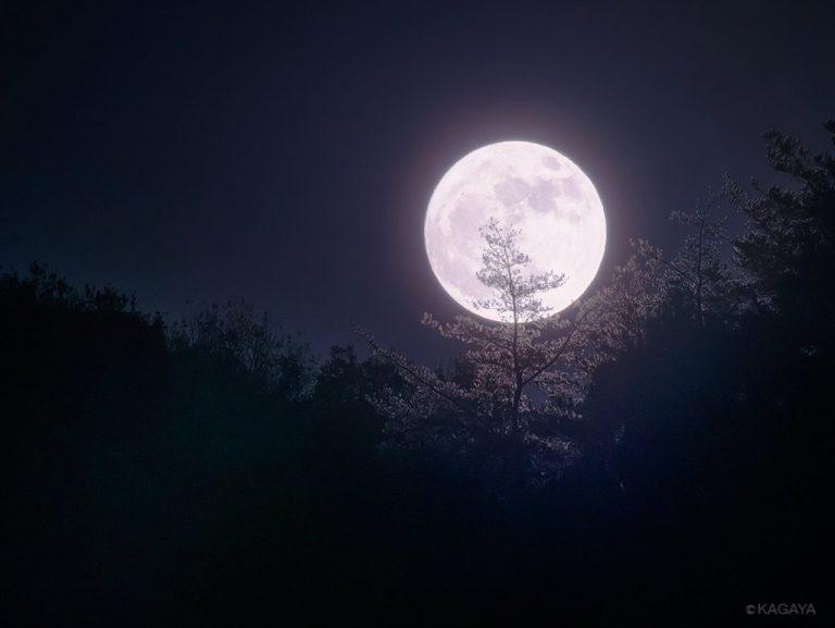 KAGAYA星空ギャラリー更新!風情あふれる満月の写真をご紹介♪